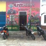 Photo0251